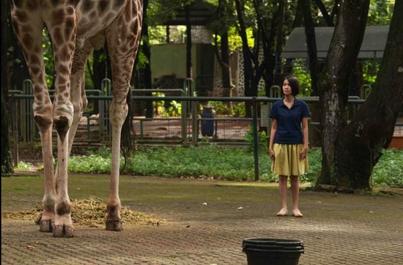 Postcards From The Zoo: Ladya Cheryl in una scena tratta dal film