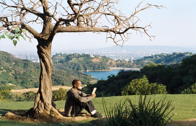 Eddie Murphy legge sotto l'albero al centro della storia in A Thousand Words