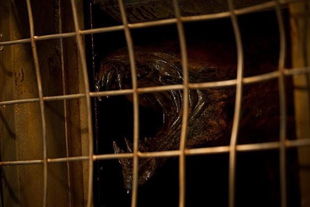 Riddick: ecco una delle mostruose creature presenti nel film