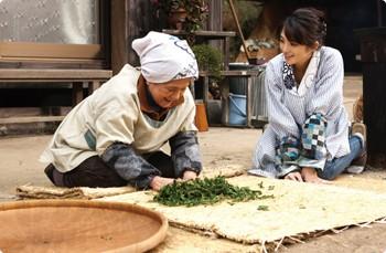 Una immagine del film Tanemaku tabibito: Minori no cha
