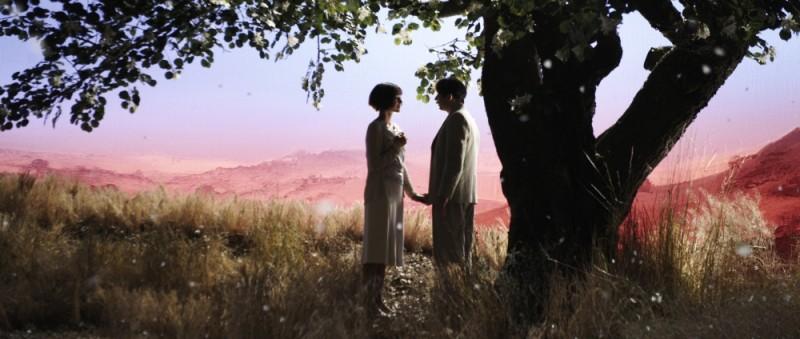 Pollo alle prugne: Mathieu Amalric e Golshifteh Farahani in una sognante scena del film