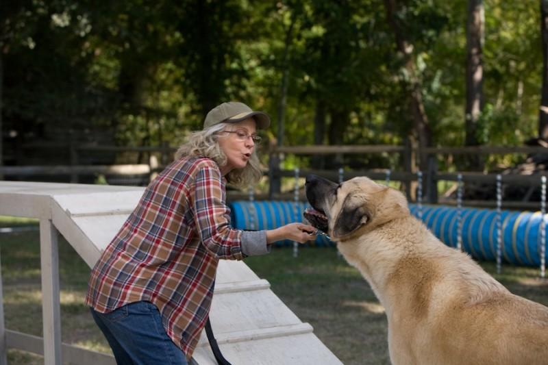 Ho cercato il tuo nome: Blythe Danner cerca di convincere il suo cane a muoversi in una scena del film