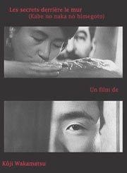 Segreti dietro il muro: la locandina del film