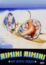 La copertina di Rimini Rimini - Un anno dopo (dvd)