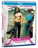 La copertina di Hesher è stato qui (blu-ray)