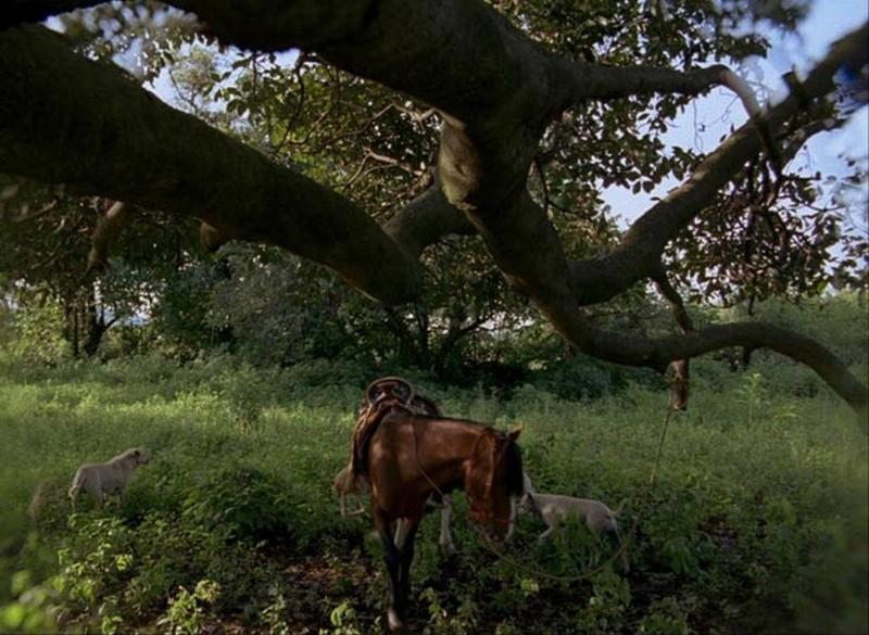 Post Tenebras Lux: un'immagine di campagna tratta dal film