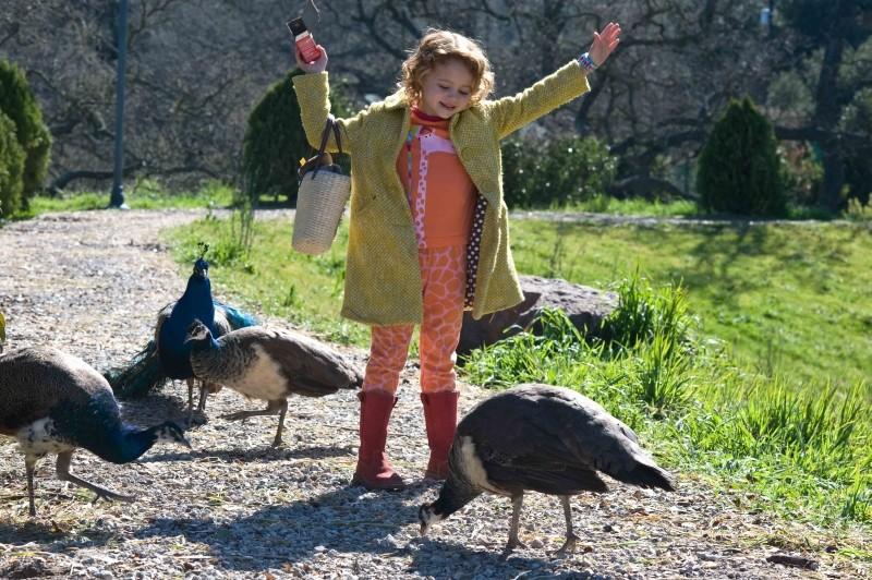 La mia vita è uno zoo: la piccola Maggie Elizabeth Jones in mezzo ad un gruppo di pavoni