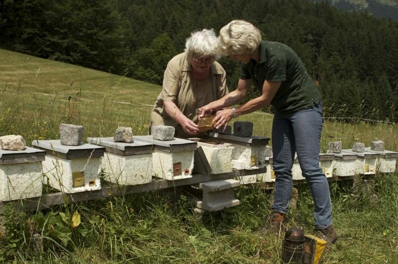 More Than Honey: l'imprenditrice austriaca del miele Heidrun Singer in una scena