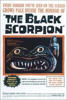 Lo scorpione nero: la locandina del film