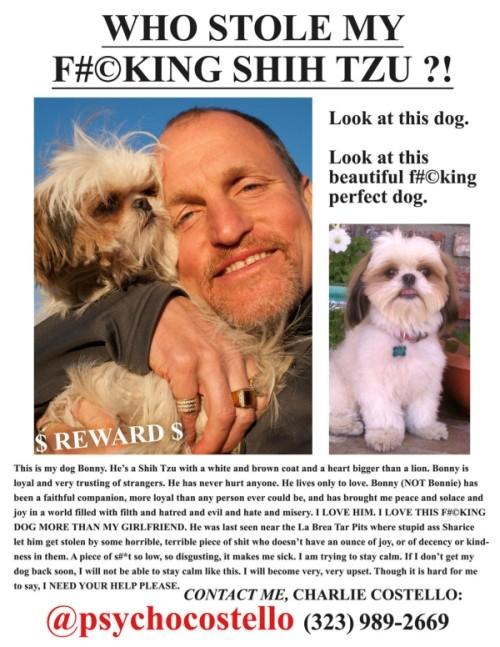 Woody Harrelson cerca il suo cane in Seven Psychopaths e lo fa con dei volantini personalizzati