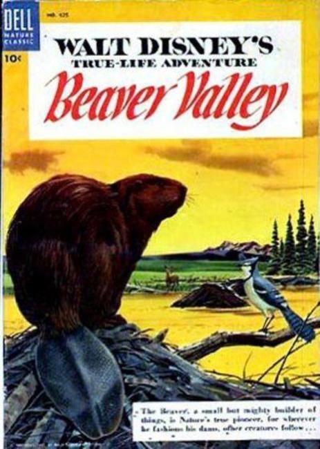 La valle dei castori: la locandina del film
