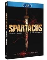 La copertina di Spartacus: Sangue e sabbia & Gli dei dell'arena (blu-ray)