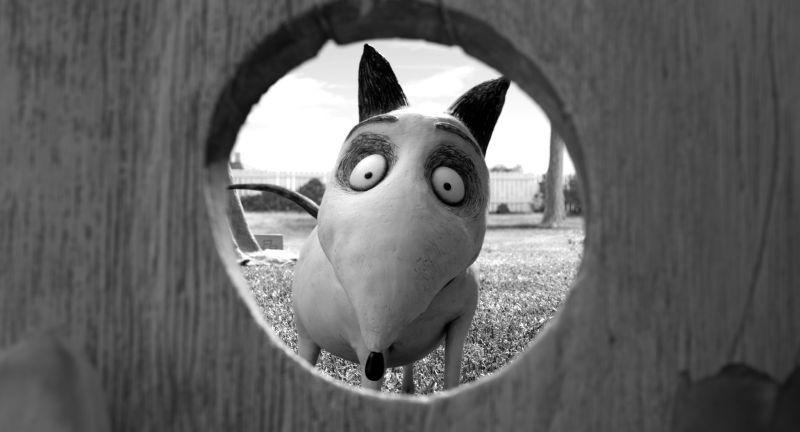 Frankenweenie: Sparky in un'immagine tratta dal nuovo capolavoro di Tim Burton