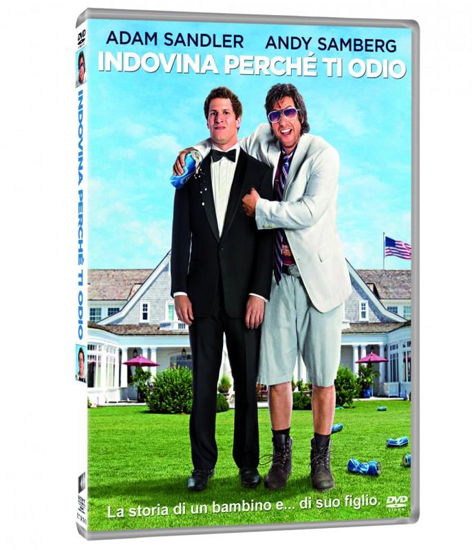 La copertina di Indovina perchè ti odio (dvd)