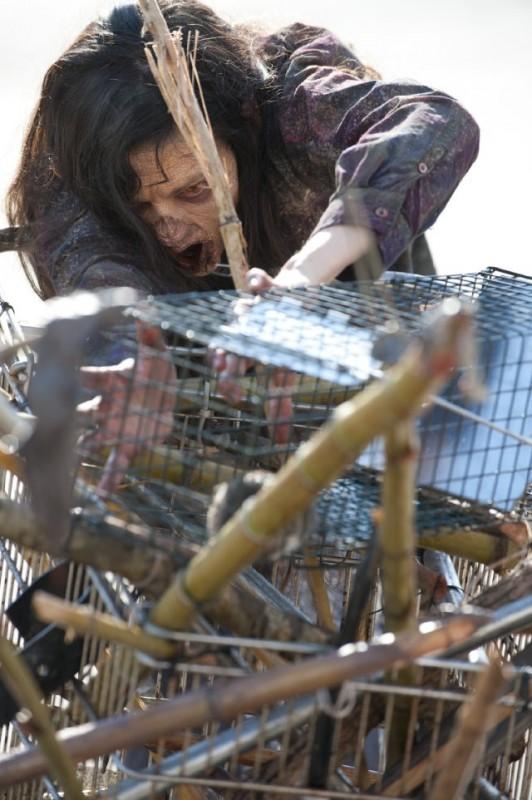 The Walking Dead: un Errante nell'episodio Ripulire