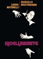 La copertina di Mogliamante (dvd)