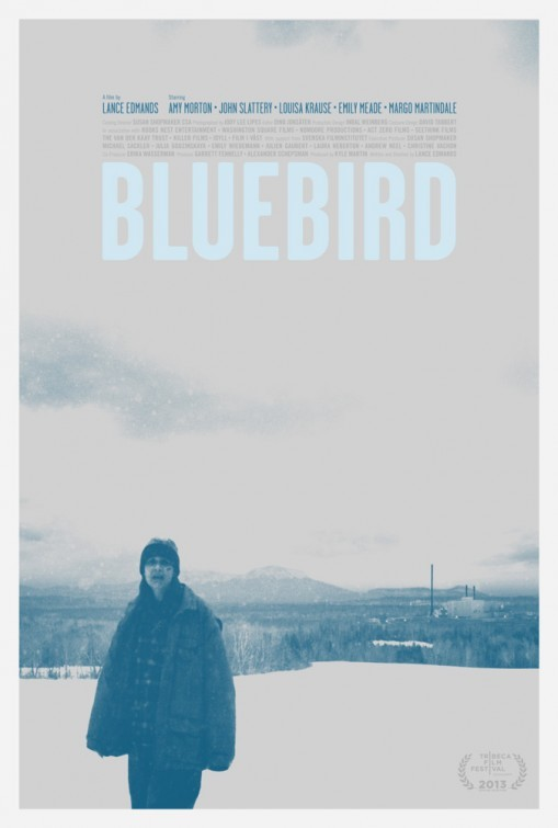 Bluebird: la locandina del film