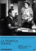 La copertina di La primula bianca (dvd)