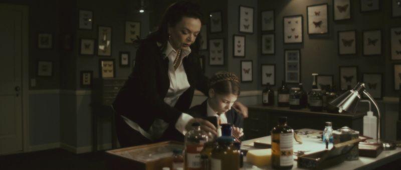 The Butterfly Room - La stanza delle farfalle: Barbara Steele insieme alla piccola Ellery Sprayberry in una scena del film