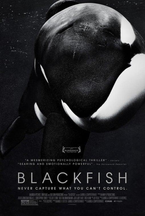 Blackfish: la locandina del film