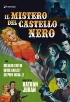 La copertina di Il mistero del castello nero (dvd)