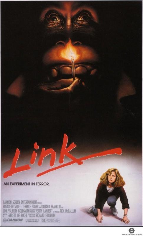 Link: la locandina del film