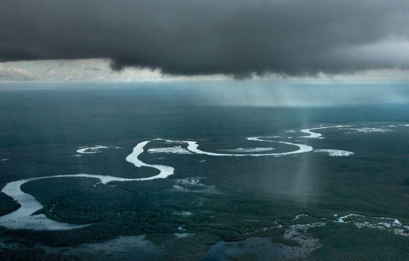 Amazonia: una scena dall'alto tratta dal documentario di Thierry Ragobert