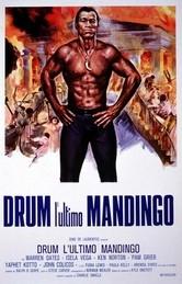 Drum - L'ultimo mandingo: la locandina del film
