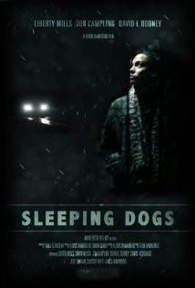 Sleeping Dogs: la locandina del film