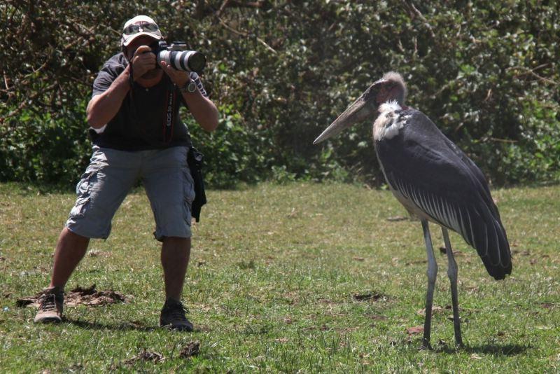 African Safari 3D: una foto dal set