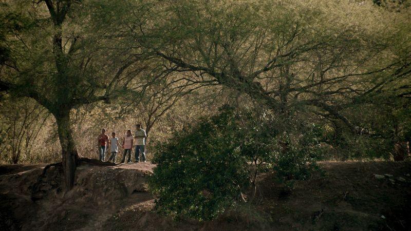 Qui e là: una scena naturalistica del film