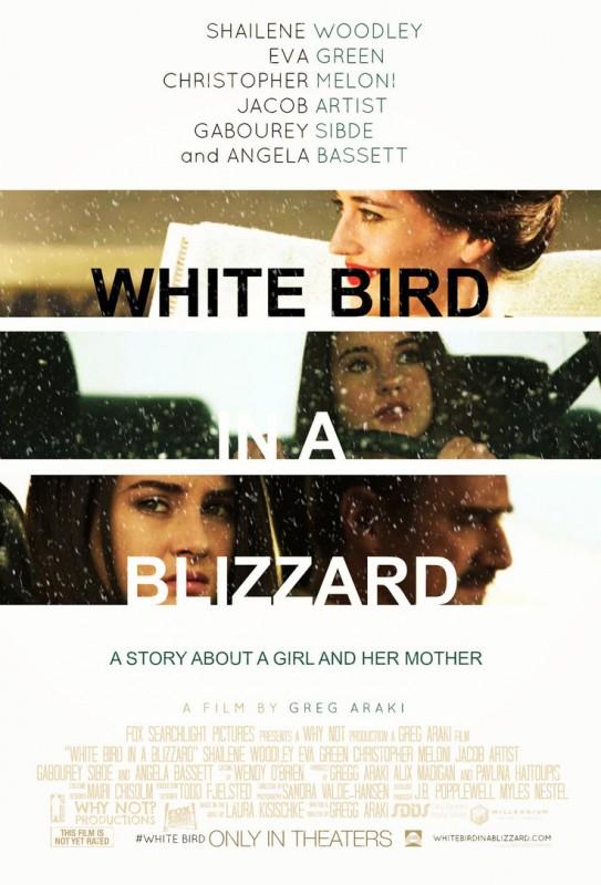 White Bird in a Blizzard: la locandina del film
