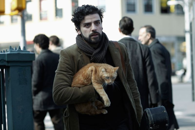 A proposito di Davis: Oscar Isaac, protagonista del film, insieme al suo bel micione rosso in un momento del film