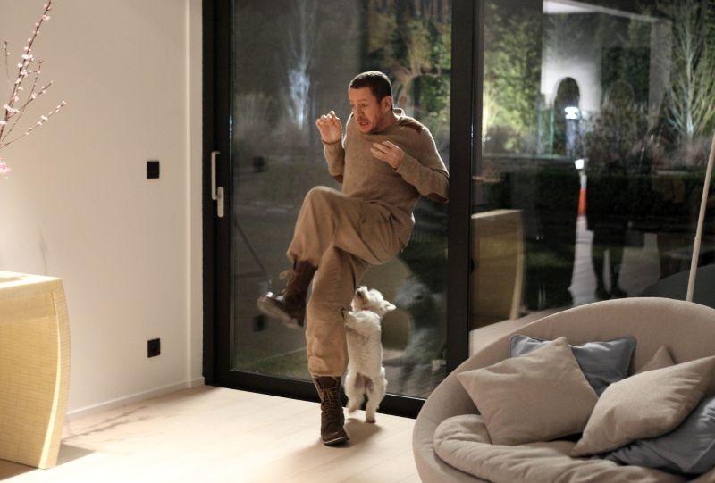 Supercondriaco - Ridere fa bene alla salute: Dany Boon terrorizzato da un cagnolino in una divertente immagine del film