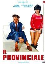 La copertina di Il provinciale (dvd)