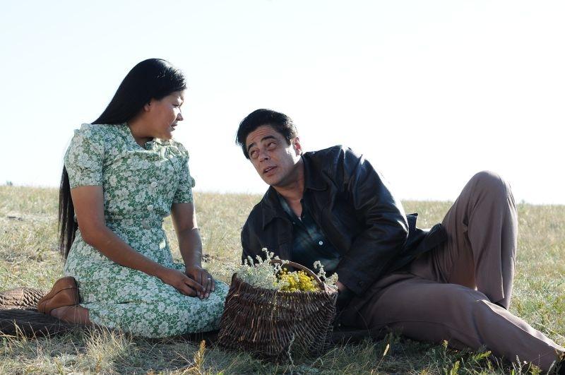 Jimmy P. (Psychotherapy of a Plains Indian) : Benicio Del Toro e Misty Upham in una scena del film