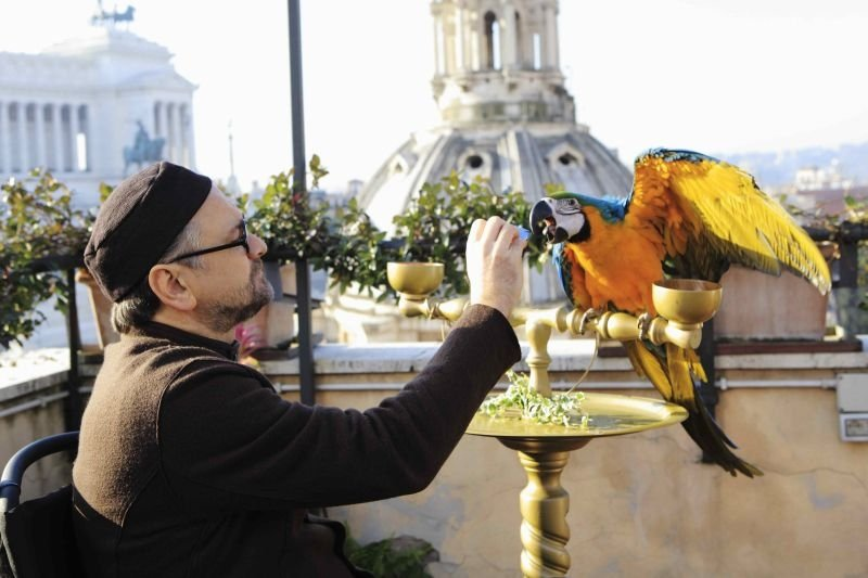 Amici come noi: Massimo Popolizio in una scena con il suo pappagallo