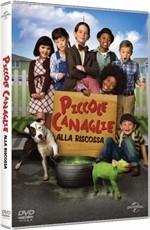 La copertina di Piccole canaglie alla riscossa (dvd)