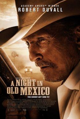 A Night in Old Mexico: la locandina del film