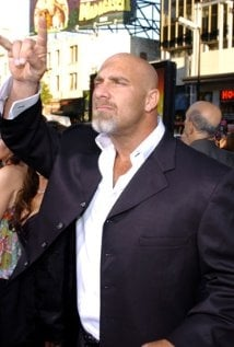 Una foto di Bill Goldberg