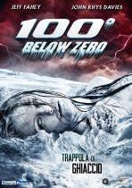 La copertina di 100 gradi sotto zero (dvd)