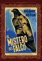 La copertina di Il mistero del falco (dvd)