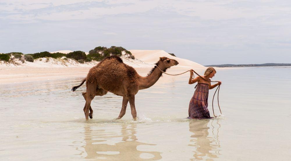 Tracks - Attraverso il deserto: Mia Wasikowska entra in acqua in una scena del film