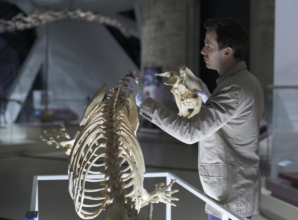 Hannibal: Mark O'Brien nell'episodio Shiizakana, seconda stagione