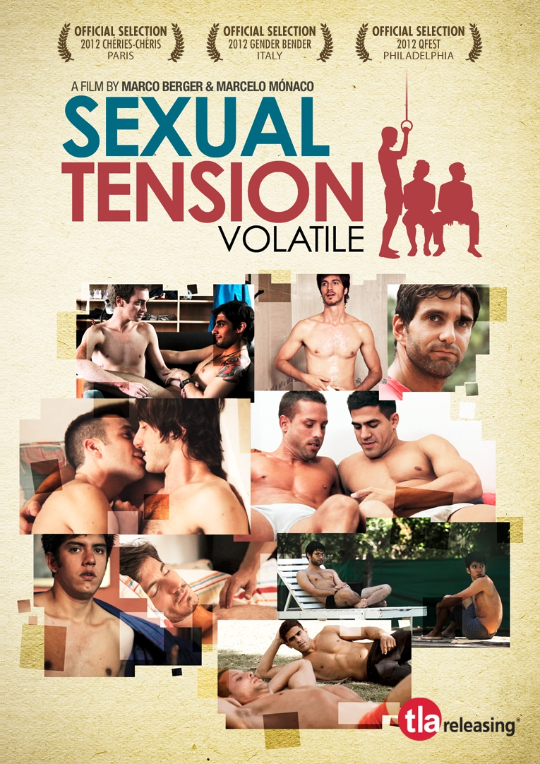La locandina di Sexual Tension: Volatile