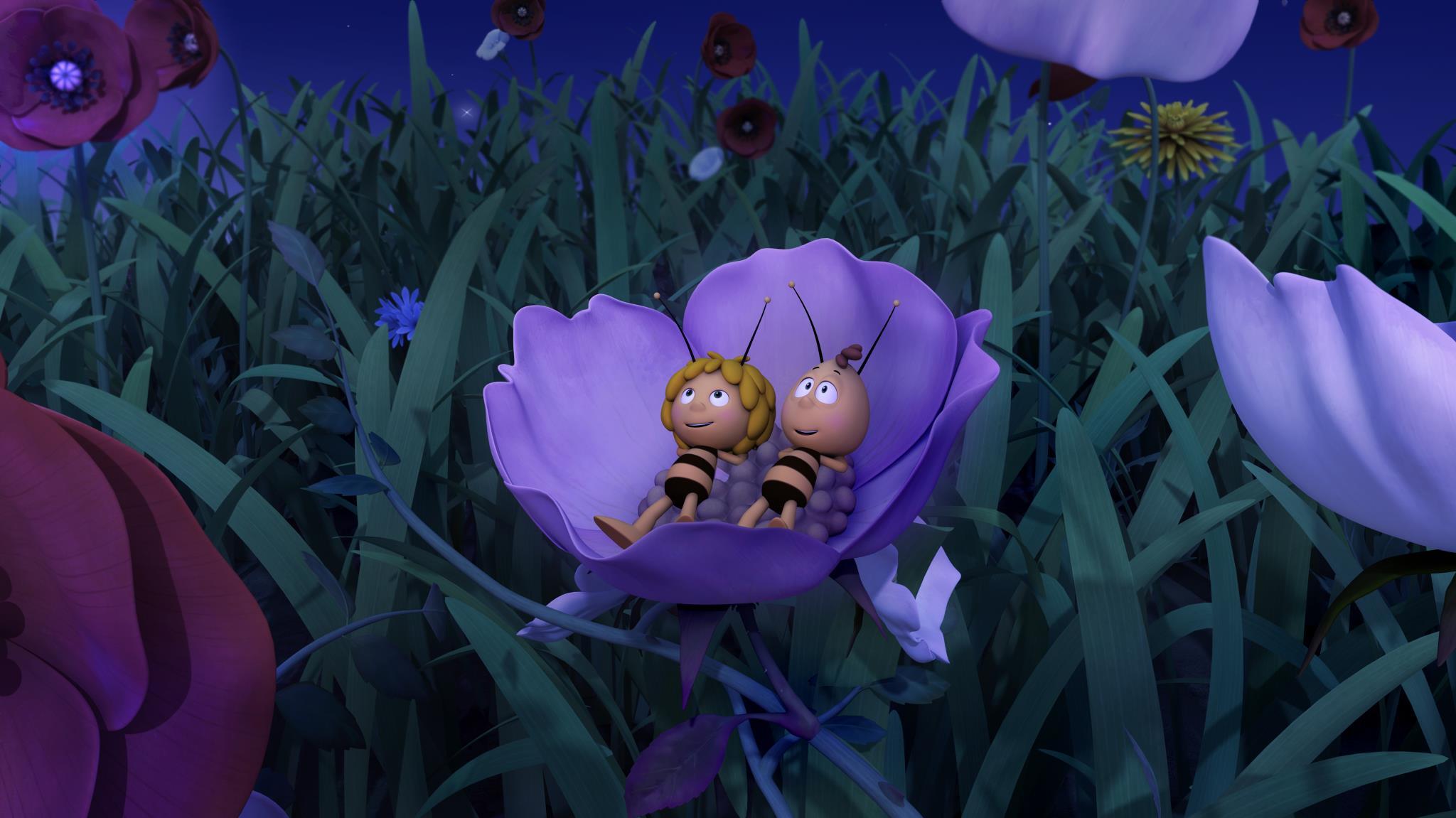 L'ape Maia - Il film: Maia e Willy si riposano di notte nel prato in una scena del film