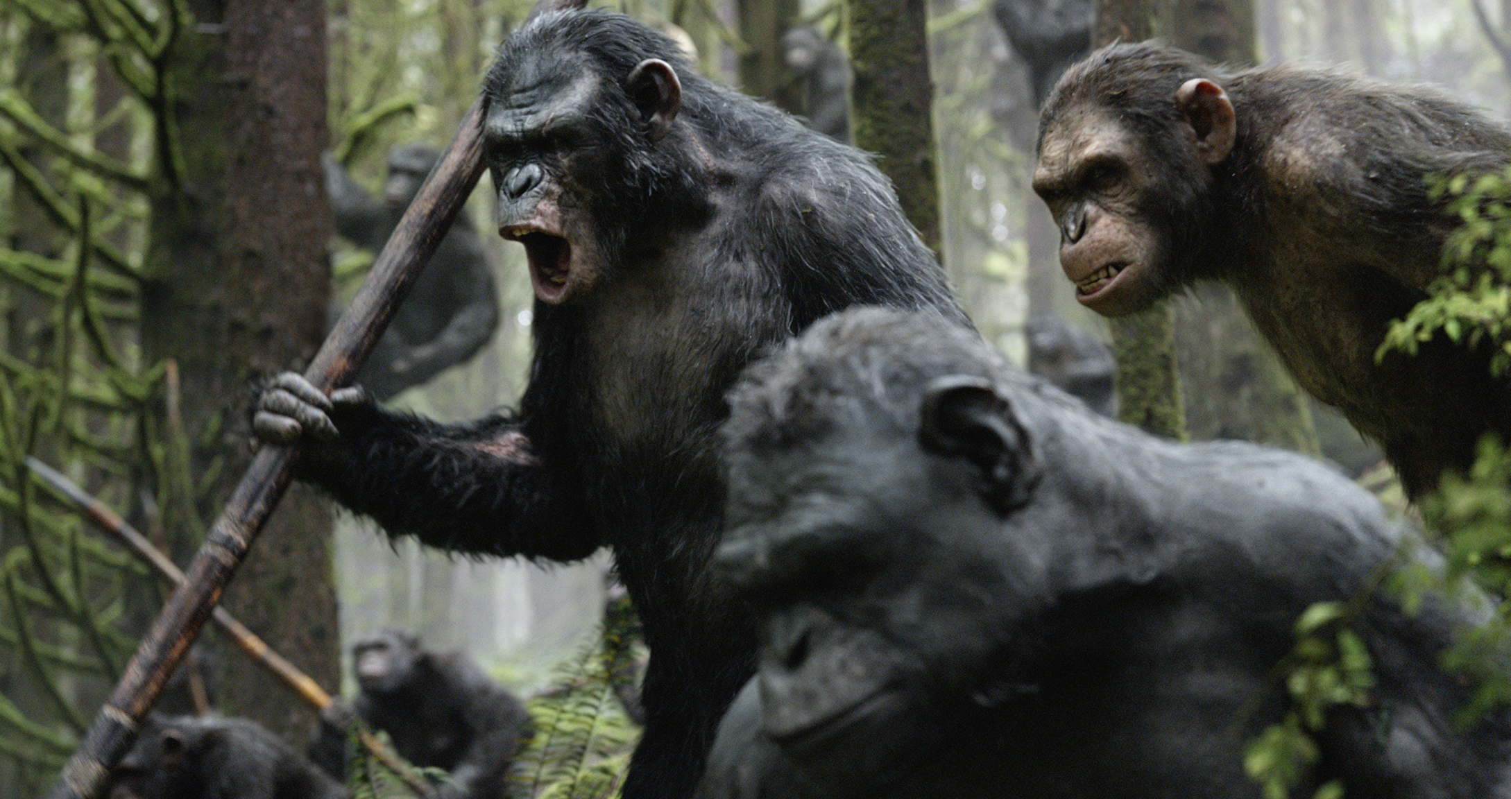 Scimmie in rivolta contro gli umani in Apes Revolution - Il pianeta delle scimmie
