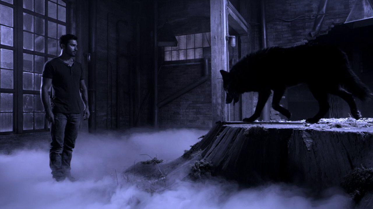 Teen Wolf: Tyler Hoechlin nell'episodio Gavlanized