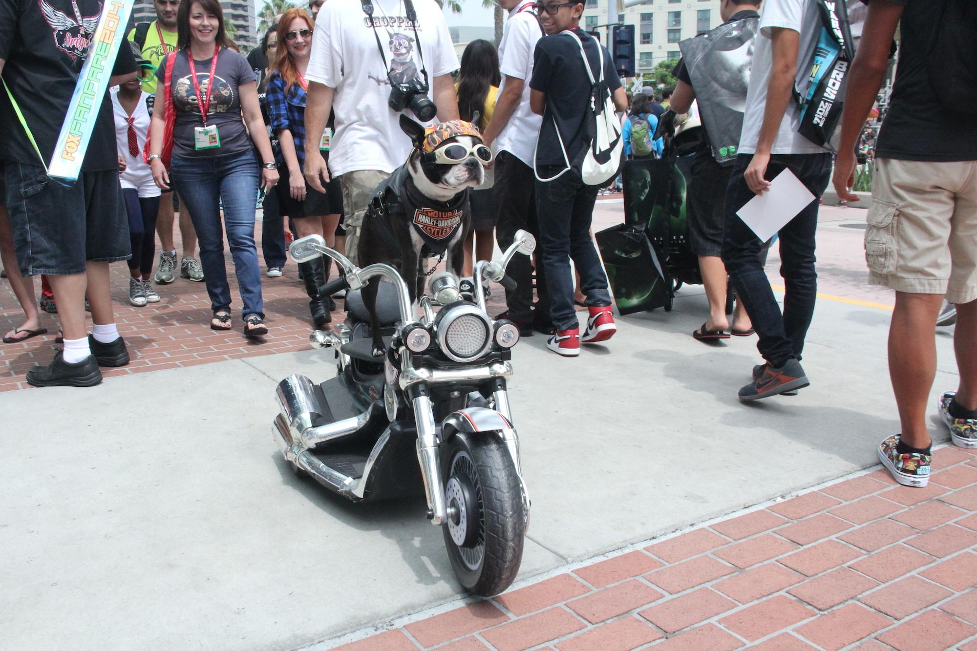 Comic-Con 2014: Cosplay a quattro zampe