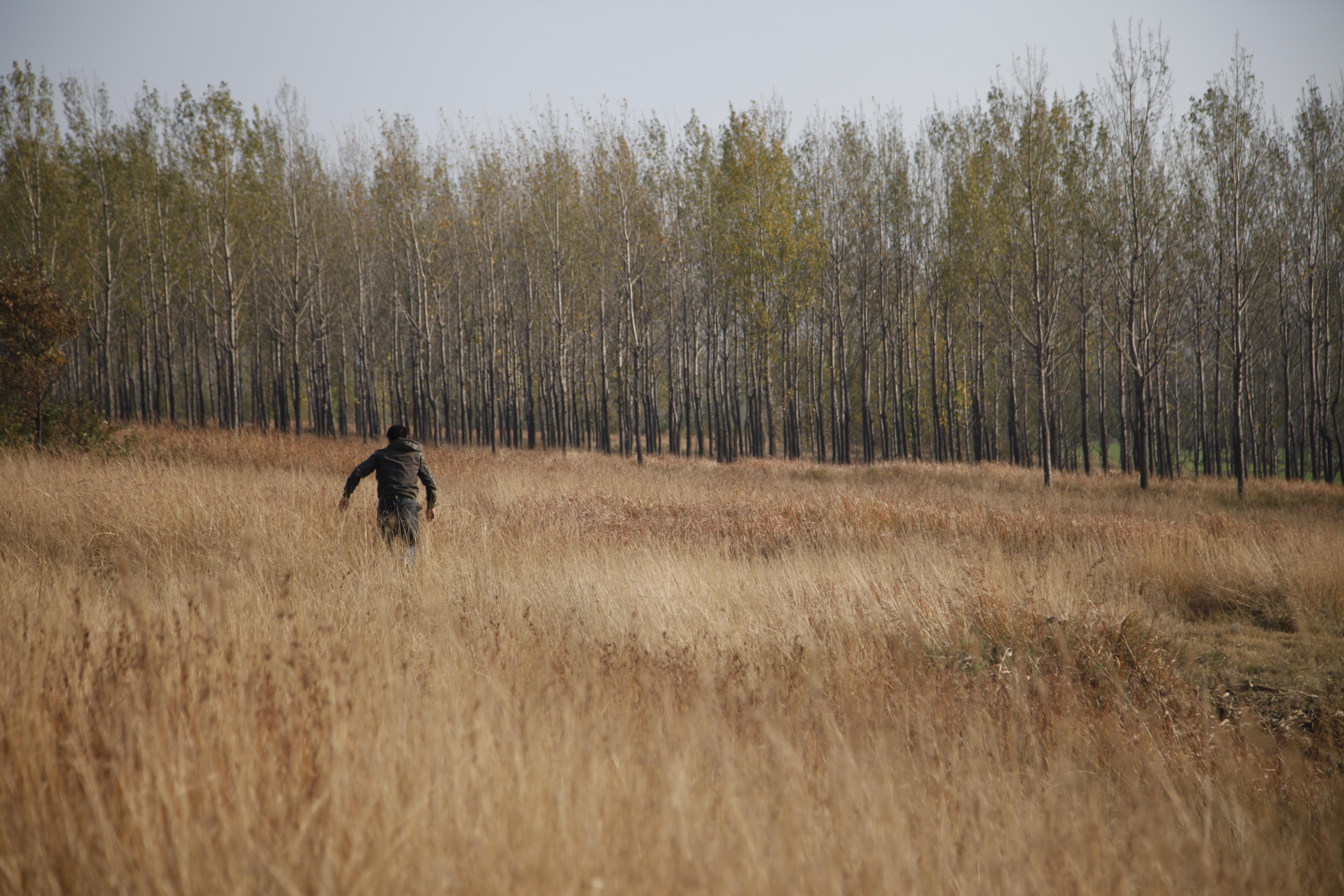 The Coffin in the Mountain: una sequenza del film di Xin Yukun